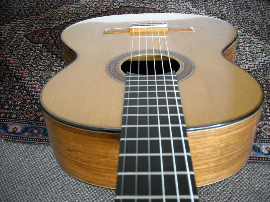 guitare luthier occasion